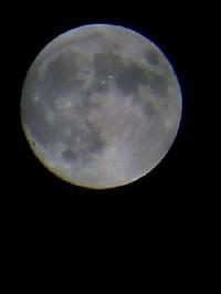 061006_20110001